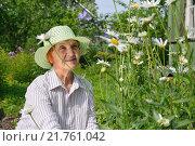 Купить «Пожилая женщина рядом с крупными садовыми ромашками на приусадебном участке», фото № 21761042, снято 26 июля 2015 г. (c) Максим Мицун / Фотобанк Лори