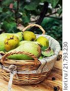 Купить «Juicy flavorful pears of nature background», фото № 21793230, снято 19 августа 2019 г. (c) PantherMedia / Фотобанк Лори