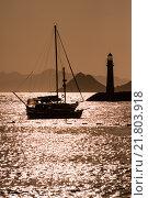 Купить «Boats and Lighthouse Silhouette at Sunset», фото № 21803918, снято 20 февраля 2019 г. (c) PantherMedia / Фотобанк Лори