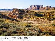 Купить «semi-desert landscape», фото № 21810902, снято 17 июля 2019 г. (c) Яков Филимонов / Фотобанк Лори