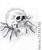 Купить «Череп на паучьих лапах с розой в зубах, рисунок карандашом», иллюстрация № 21812102 (c) Веснинов Янис / Фотобанк Лори