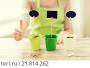 Купить «close up of woman over pots with soil and signs», фото № 21814262, снято 3 марта 2015 г. (c) Syda Productions / Фотобанк Лори
