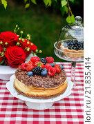Купить «Cheesecake with chocolate topping decorated with summer fruits», фото № 21835414, снято 18 февраля 2018 г. (c) BE&W Photo / Фотобанк Лори