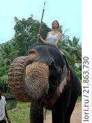 Купить «Женщина катается на слоне», фото № 21863730, снято 14 декабря 2018 г. (c) Некрасов Андрей / Фотобанк Лори