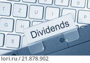 Купить «Dividends Folder Register Index», фото № 21878902, снято 16 июня 2019 г. (c) PantherMedia / Фотобанк Лори