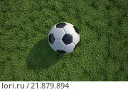 Купить «Soccer/football  ball close up on grass lawn. Top view.», фото № 21879894, снято 21 мая 2018 г. (c) PantherMedia / Фотобанк Лори