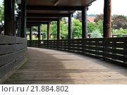 Купить «bridge übern lake in the spa park during the summer - weiskirchen,saarland», фото № 21884802, снято 19 декабря 2018 г. (c) PantherMedia / Фотобанк Лори