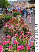 Люди смотрят на цветы, продающиеся на площади Гроте Маркт в Харлеме, Нидерланды (2015 год). Редакционное фото, фотограф Николай Кокарев / Фотобанк Лори