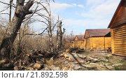 Купить «Деревянные дома на опушке леса», видеоролик № 21892598, снято 13 февраля 2016 г. (c) Олег Хархан / Фотобанк Лори