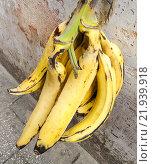 Связка бананов. Стоковое фото, фотограф Александр / Фотобанк Лори