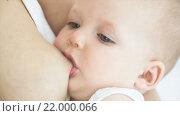 Кормление ребенка грудью. Стоковое видео, видеограф Анатолий Типляшин / Фотобанк Лори