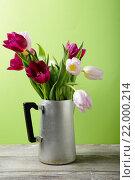 Весенние цветы в старом кувшине. Стоковое фото, фотограф Афанасьева Ольга / Фотобанк Лори