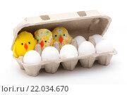 Яйца и цыплята в закрытой коробке. Стоковое фото, фотограф Роман Червов / Фотобанк Лори
