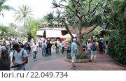 Центральная часть парка с посетителями на территории зоопарка Лоро (Loro Park). Пуэрто де ла Круз (Puerto de la Cruz), Тенерифе, Канарские острова, Испания (2016 год). Редакционное видео, видеограф Кекяляйнен Андрей / Фотобанк Лори