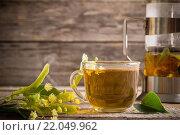 Купить «cup of tea with linden on wooden background», фото № 22049962, снято 28 июня 2014 г. (c) Майя Крученкова / Фотобанк Лори