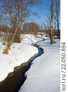 Купить «Река Скорогодайка в конце зимы», фото № 22050894, снято 28 февраля 2016 г. (c) Елена Коромыслова / Фотобанк Лори