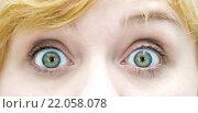 Купить «cloesup of woman's eyes», фото № 22058078, снято 20 марта 2019 г. (c) PantherMedia / Фотобанк Лори