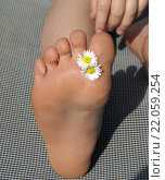 Купить «Maedchen, Fuss, Blume, Gaensebluemchen», фото № 22059254, снято 20 мая 2019 г. (c) PantherMedia / Фотобанк Лори