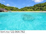 Купить «Bay beach front at the Similan Islands in Thailand», фото № 22064782, снято 21 февраля 2019 г. (c) PantherMedia / Фотобанк Лори