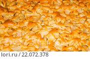 Купить «Яблочный пирог. Шарлотка.», фото № 22072378, снято 17 сентября 2014 г. (c) Валерий Апальков / Фотобанк Лори