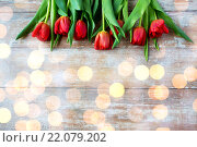Купить «close up of red tulips on wooden background», фото № 22079202, снято 3 марта 2015 г. (c) Syda Productions / Фотобанк Лори