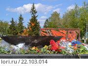 Вечный огонь на площади Героев в Дзержинске (2012 год). Редакционное фото, фотограф Балашов Антон Владимирович / Фотобанк Лори