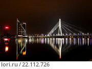 Купить «Вантовый мост через реку Даугава, Рига, Латвия», фото № 22112726, снято 5 марта 2016 г. (c) Мальцев Артур / Фотобанк Лори