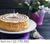 Торт эстерхази со свечами для дня рождения. Стоковое фото, фотограф Sergey Fatin / Фотобанк Лори