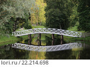Мост в Михайловском (2015 год). Редакционное фото, фотограф Роман Кузьмин / Фотобанк Лори