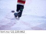 Купить «ice hockey player in action», фото № 22220862, снято 22 мая 2019 г. (c) easy Fotostock / Фотобанк Лори