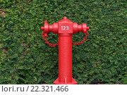 Красный пожарный гидрант с зеленым фоном. Стоковое фото, фотограф Юрий Александров / Фотобанк Лори