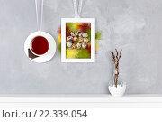 Чашка чая с шоколадом на стене. Перепелиные яйца и цветные перья на фоне бетона. Стоковое фото, фотограф Козлова Анастасия / Фотобанк Лори
