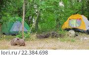 Купить «Девочка забирается в туристическую палатку», видеоролик № 22384698, снято 16 августа 2015 г. (c) Tatiana Kravchenko / Фотобанк Лори