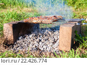 Купить «Barbecue with delicious grilled meat on the improvised oven made of brick», фото № 22426774, снято 6 августа 2020 г. (c) FotograFF / Фотобанк Лори