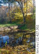 Купить «Pond in the city autumn park.», фото № 22427302, снято 1 ноября 2015 г. (c) Юрий Брыкайло / Фотобанк Лори
