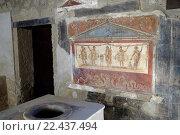 Купить «The Thermopolium of Vetutius Placidus, Pompeii the ancient Roman town near Naples, Campania, Italy, Europe», фото № 22437494, снято 26 февраля 2016 г. (c) age Fotostock / Фотобанк Лори