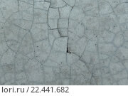 Купить «cracked gray concrete wall texture», фото № 22441682, снято 11 февраля 2016 г. (c) Syda Productions / Фотобанк Лори