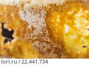 Купить «close up of honey in honeycomb», фото № 22441734, снято 15 февраля 2016 г. (c) Syda Productions / Фотобанк Лори