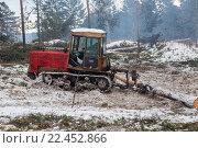 Купить «Трактор транспортирует бревно», фото № 22452866, снято 24 августа 2019 г. (c) Рустам Шигапов / Фотобанк Лори