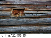 Маленькое окно в бревенчатой стене. Стоковое фото, фотограф Алексей Лобанов / Фотобанк Лори