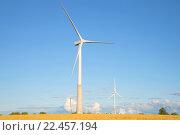 Купить «Вид на ветряные генераторы летним вечером. Эстония», фото № 22457194, снято 1 августа 2015 г. (c) Виктор Карасев / Фотобанк Лори