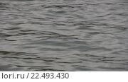 Небольшие волны в водоеме. Стоковое видео, видеограф Евгений Пивоваров / Фотобанк Лори