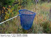 Купить «Подсачек», фото № 22505006, снято 30 сентября 2012 г. (c) Роман Ислентьев / Фотобанк Лори
