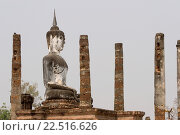 Купить «Buddha statue columns Wat Mahathat Sukhothai Thailand.», фото № 22516626, снято 9 февраля 2007 г. (c) age Fotostock / Фотобанк Лори