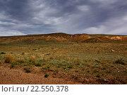 Казахская степь весной (2012 год). Стоковое фото, фотограф Алексей Большаков / Фотобанк Лори