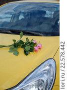 Розы на капоте. Стоковое фото, фотограф Семенова Ольга Евгеньевна / Фотобанк Лори