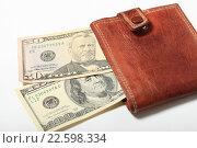 Купить «Сто пятьдесят долларов в кошельке», эксклюзивное фото № 22598334, снято 15 апреля 2016 г. (c) Яна Королёва / Фотобанк Лори