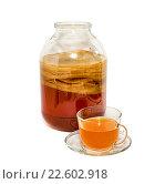 Купить «Чайный гриб», фото № 22602918, снято 17 апреля 2016 г. (c) Наталья Осипова / Фотобанк Лори