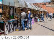 Туристы покупают сувениры на рынке у Музея Янтаря в Калининграде (2016 год). Редакционное фото, фотограф Ксения Семенова / Фотобанк Лори