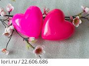 Два влюбленных сердца на белом фоне в цветах сакуры. Стоковое фото, фотограф Светлана Скрипник / Фотобанк Лори